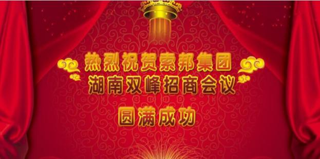 热烈庆祝湖南双峰营销峰会圆满成功