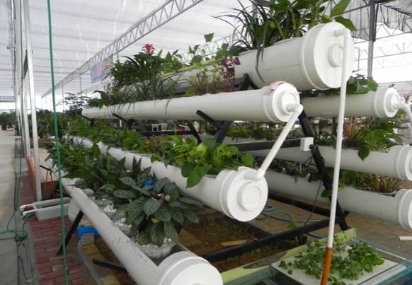 pvc管养花样式全集大放送